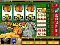 Big Five slots Slot Reels