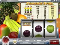Fantastic Fruit slots Slot Reels