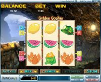 Golden Gopher slots Slot Reels