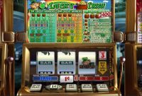 Lucky Irish slots Slot Reels