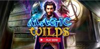 Magic Wilds slots Info