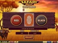 Safari Heat slots Gamble Screen