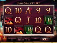 The Finer Reels of Life slots Slot Reels