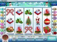 Winter Wonders slots Slot Reels