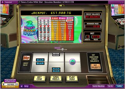 2 Times Extra Wild slots Slot Reels
