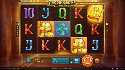Book of Gold: Double Chance slots Main