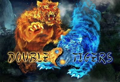 Double Tigers slots Info