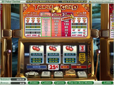 Triple Gold slots Slot Reels
