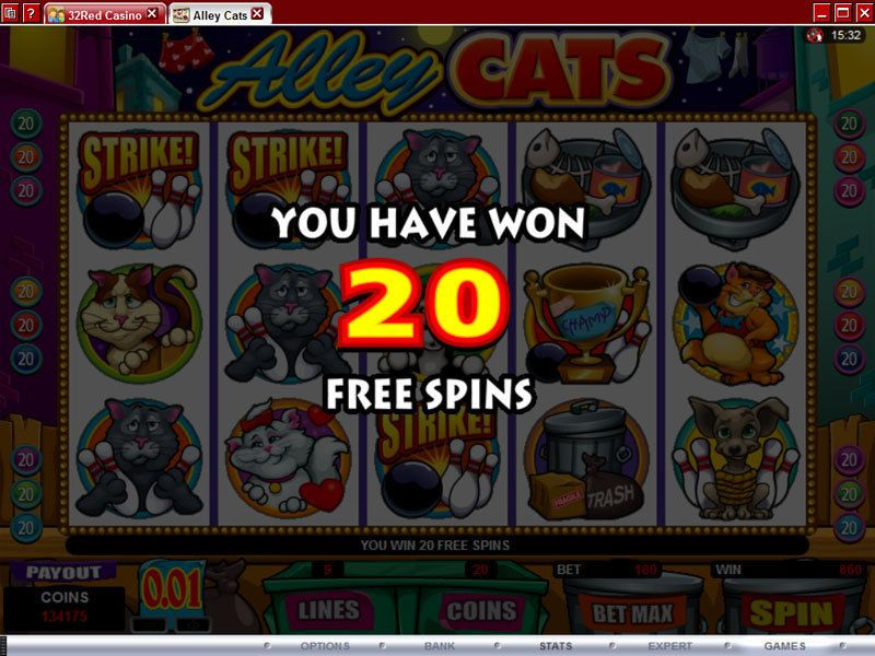 Alley Cats slots Bonus 1