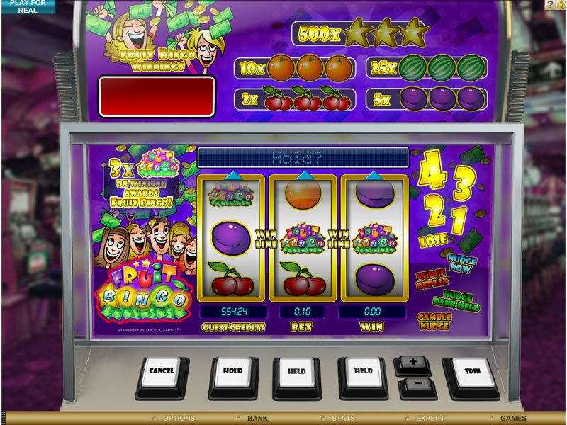 Slot bingo machine gambling in cancun