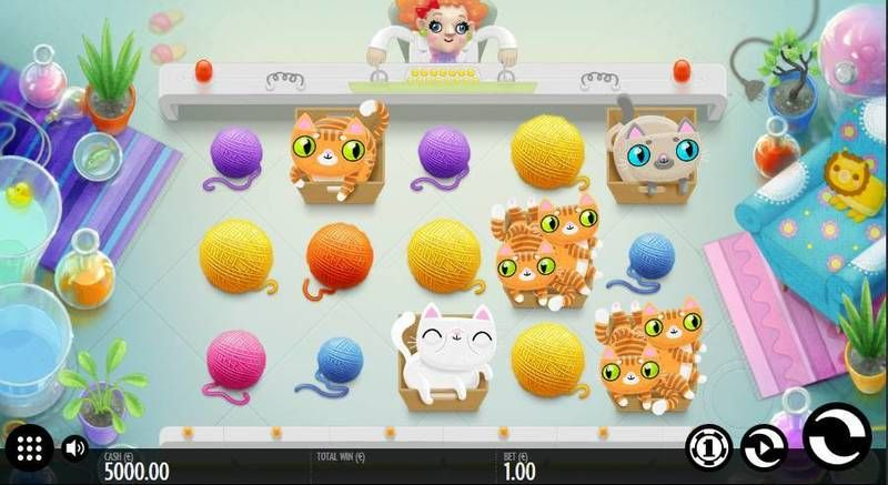 Not Enough Kittens slots Slot Reels