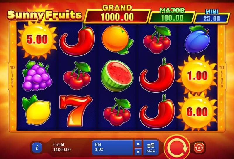 Sunny Fruits Hold and win slots Slot Reels